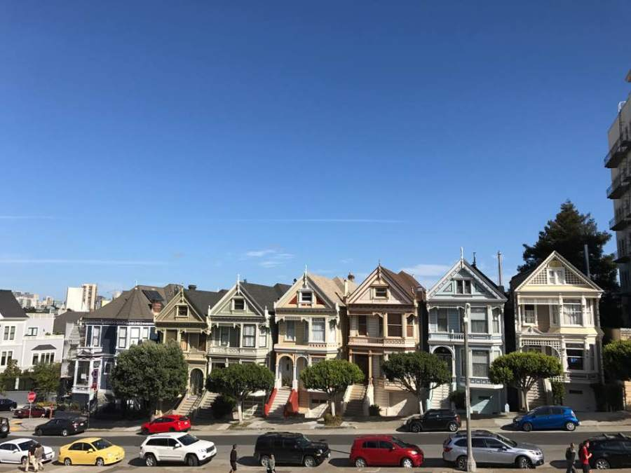 painted ladies.jpg